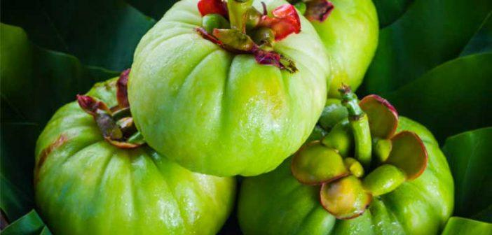 garcinia-cambogia-per-dimagrire