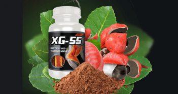 integratore XG 55